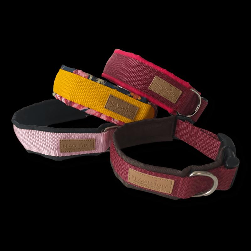 DEIN Halsband ❤️ Beagletuff - Rund um den Hund