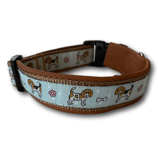 Beagle Halsband hellbraun rotbraun hellblau Sofortkauf